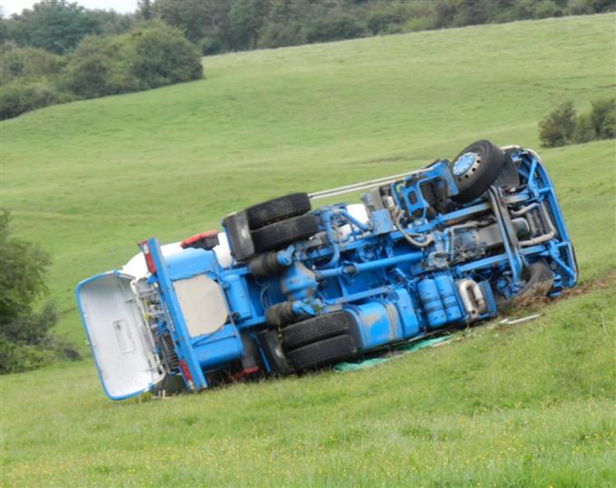En Haute Loire, un camion se prélasse en se roulant dans l'herbe grasse